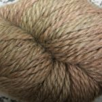 Baby Llama - Rye Seeds